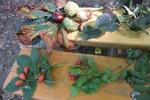 1. Poznáváme podzimní plody